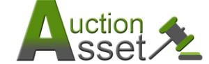 Auction Asset Limited