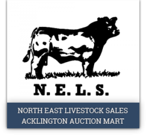 Acklington Auction Mart