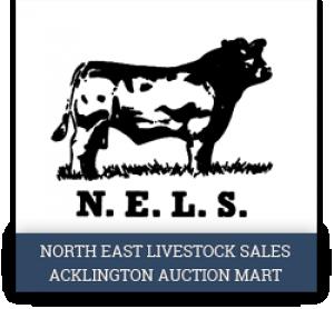 Acklington Auction Mart
