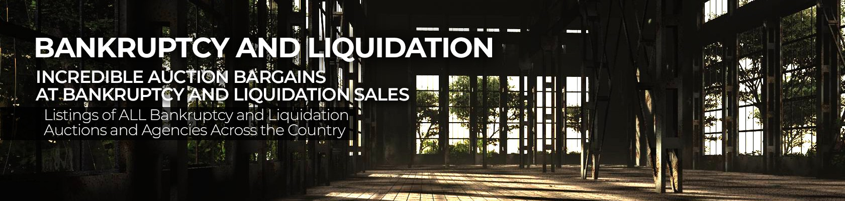bankruptcy and liquidation auctions
